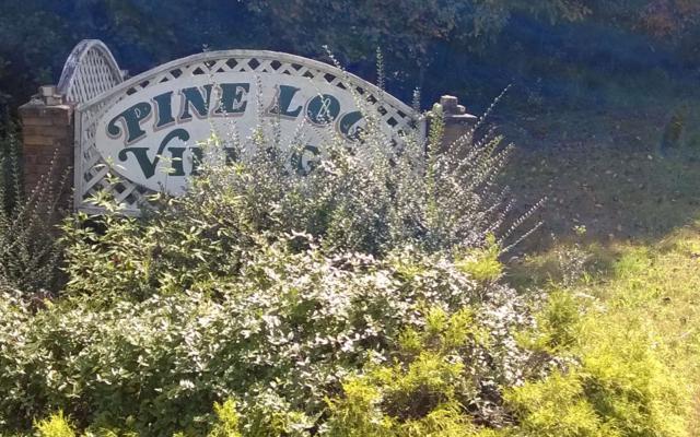 LT 12 Tiefencastle, Blairsville, GA 30512 (MLS #286223) :: RE/MAX Town & Country