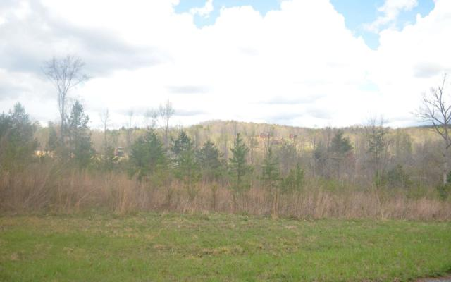 LOT 3 Sharptop Settlement, Blairsville, GA 30512 (MLS #286252) :: RE/MAX Town & Country