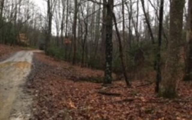 LOT80 Tattle Tale Lane, East Ellijay, GA 30539 (MLS #286290) :: RE/MAX Town & Country