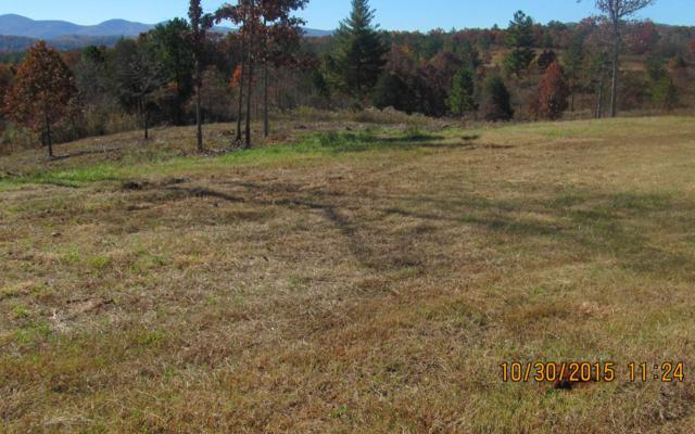 LT 23 Northshore, Blairsville, GA 30512 (MLS #286412) :: RE/MAX Town & Country
