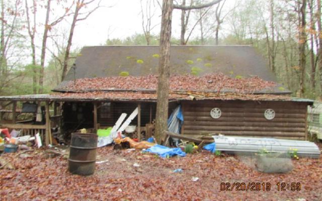 559 Laurel Crossing, Blue Ridge, GA 30513 (MLS #286540) :: RE/MAX Town & Country