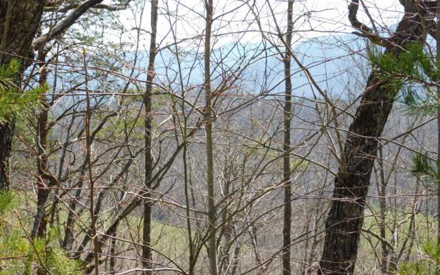 LOT 5 Deer Valley, Warne, NC 28909 (MLS #286592) :: Path & Post Real Estate