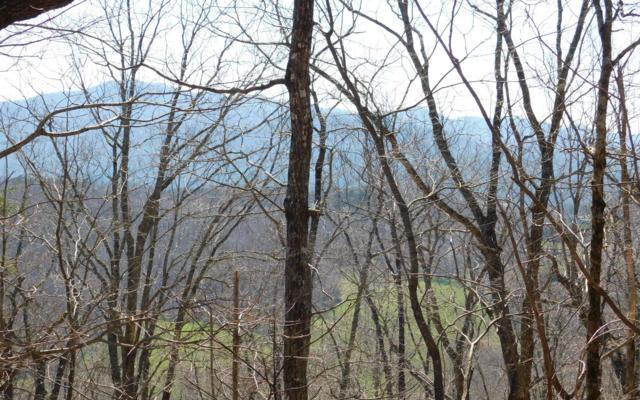 LOT 6 Deer Valley, Warne, NC 28909 (MLS #286593) :: Path & Post Real Estate