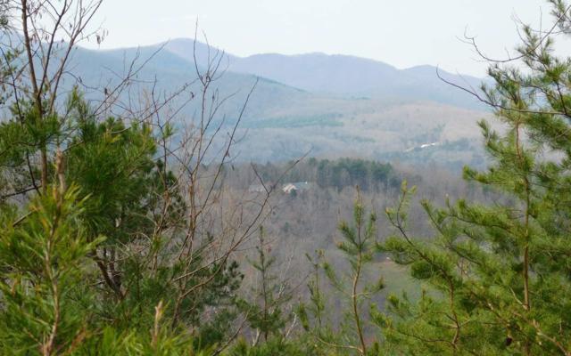LT 10 Deer Valley, Warne, NC 28909 (MLS #286594) :: Path & Post Real Estate