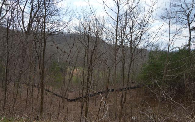 LT 11 Deer Valley, Warne, NC 28909 (MLS #286595) :: Path & Post Real Estate