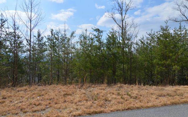 LT 40 Deer Valley, Warne, NC 28909 (MLS #286598) :: Path & Post Real Estate