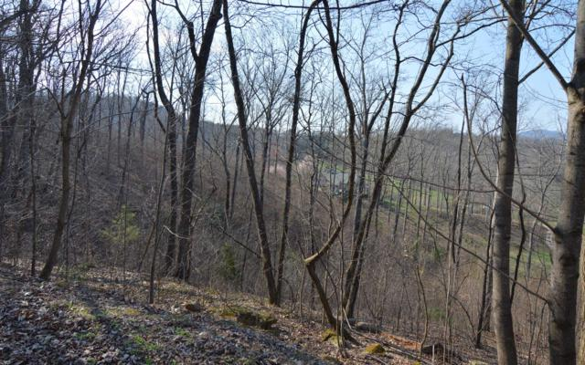 LT 14 Deer Valley, Warne, NC 28909 (MLS #286600) :: Path & Post Real Estate