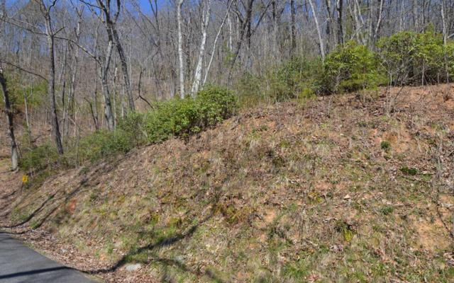 LT 15 Deer Valley, Warne, NC 28909 (MLS #286601) :: Path & Post Real Estate