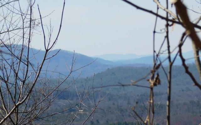 LT 24 Deer Valley, Warne, NC 28909 (MLS #286608) :: RE/MAX Town & Country
