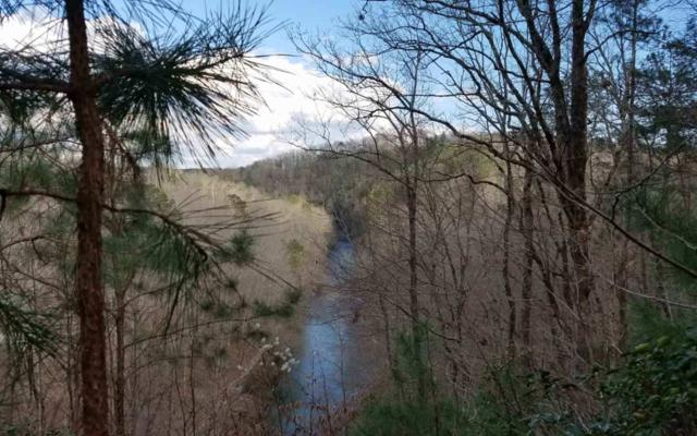 9 AC Rushing Waters Ct, Talking Rock, GA 30175 (MLS #286633) :: RE/MAX Town & Country