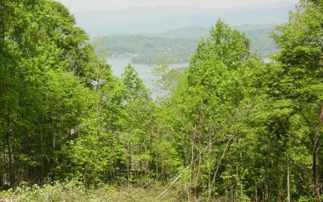 #73 Eagles View, Hayesville, NC 28904 (MLS #286674) :: RE/MAX Town & Country