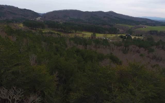Belaire Drive, Ducktown, TN 37326 (MLS #286796) :: Path & Post Real Estate