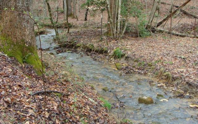 LT 66 Crestwood Heights, Blairsville, GA 30512 (MLS #286846) :: RE/MAX Town & Country