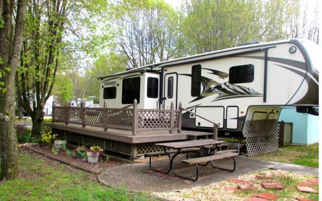 202 Conley Creek Circle, Blairsville, GA 30512 (MLS #286856) :: RE/MAX Town & Country
