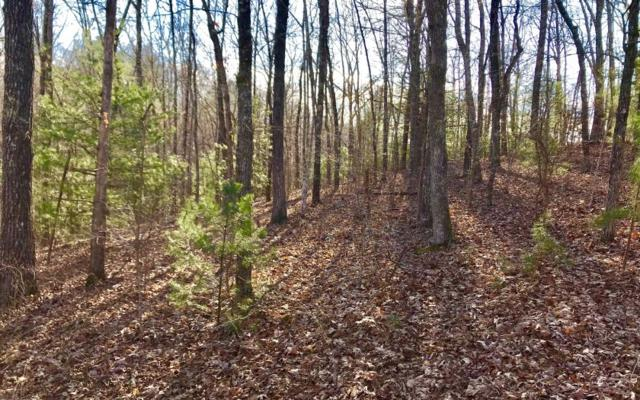 LOT80 Riverwalk The Toccoa, Mineral Bluff, GA 30559 (MLS #286900) :: RE/MAX Town & Country