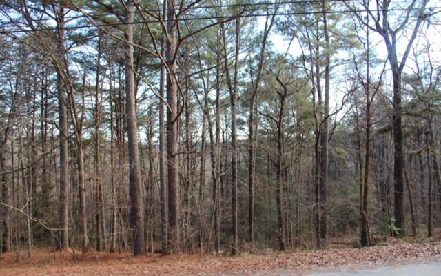 168 Fightingtown Creek R, McCaysville, GA 30555 (MLS #286911) :: RE/MAX Town & Country