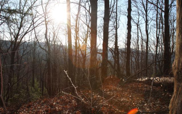 LOT 8 Summit Pass, Chatsworth, GA 30540 (MLS #287060) :: RE/MAX Town & Country