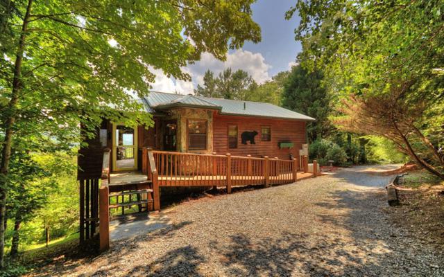 287 Cheyenne Trail, Blue Ridge, GA 30513 (MLS #287101) :: RE/MAX Town & Country