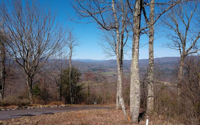 35 Double Knobs, Hayesville, NC 28904 (MLS #287121) :: RE/MAX Town & Country