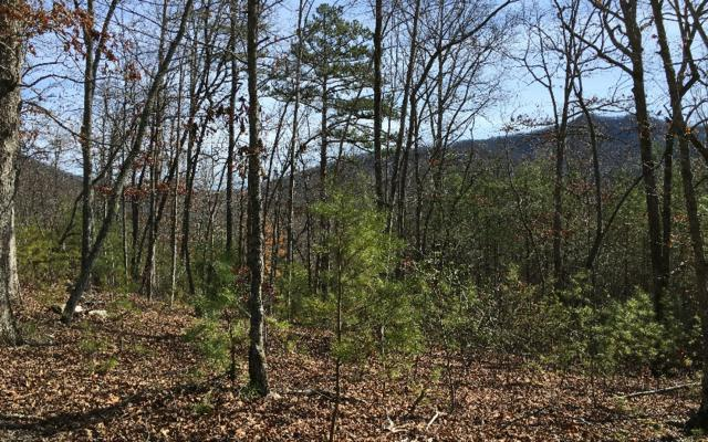 LOT12 Asheland Cove, Young Harris, GA 30582 (MLS #287148) :: RE/MAX Town & Country