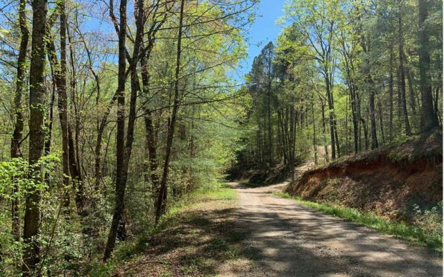 LT36 Essex Drive, Ellijay, GA 30540 (MLS #287384) :: RE/MAX Town & Country