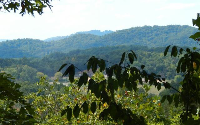 19 Trillium Heights, Hayesville, NC 28904 (MLS #287556) :: RE/MAX Town & Country