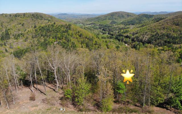 LOT 7 Chestnut Mountain, Blairsville, GA 30512 (MLS #287613) :: RE/MAX Town & Country