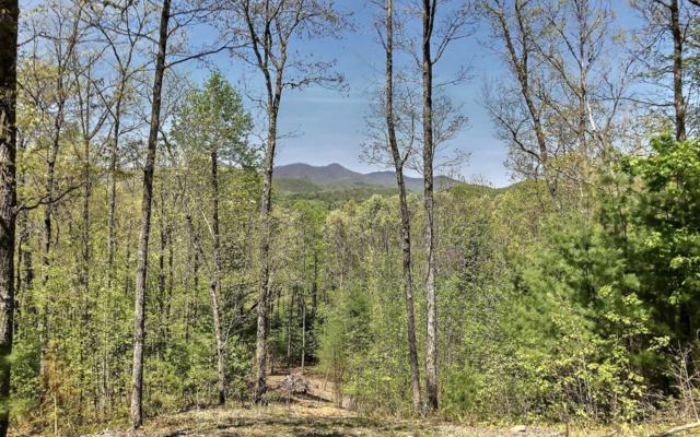 LT 94 Mountain High, Mineral Bluff, GA 30559 (MLS #287682) :: RE/MAX Town & Country