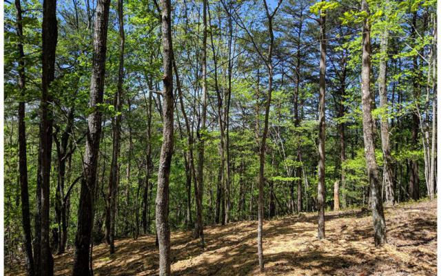 Cherry Log, GA 30522 :: Path & Post Real Estate