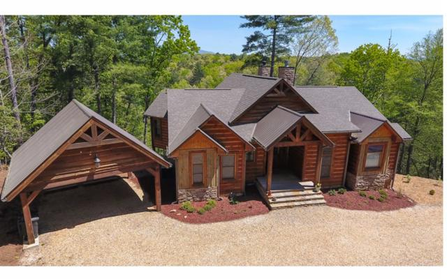 30 Blackberry Circle, Ellijay, GA 30536 (MLS #287751) :: RE/MAX Town & Country