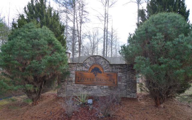 LT 48 Laurel Brooke, Blairsville, GA 30512 (MLS #287759) :: RE/MAX Town & Country