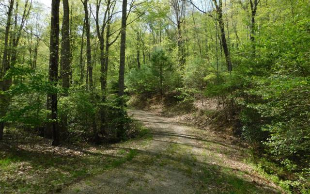 Hidden Springs Drive, Brasstown, NC 28902 (MLS #287786) :: Path & Post Real Estate