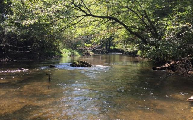 LT 27 Woodland Trail, Epworth, GA 30541 (MLS #287800) :: RE/MAX Town & Country