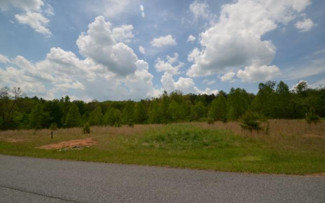 Blairsville, GA 30512 :: RE/MAX Town & Country