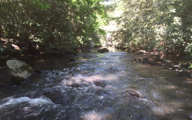 LT80 Goose Island Hide Aw, Cherry Log, GA 30522 (MLS #287917) :: RE/MAX Town & Country