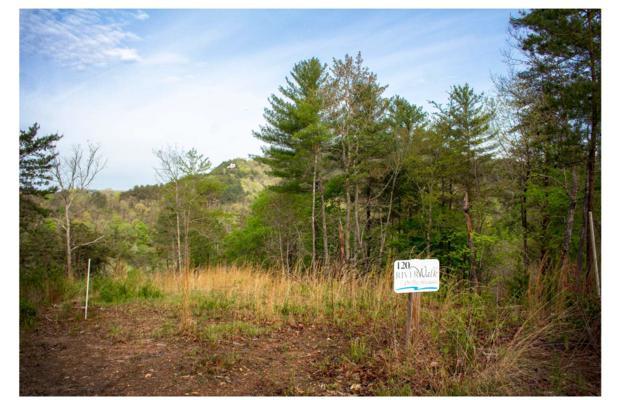 00 Mountain Watch Lane, Murphy, NC 28906 (MLS #287936) :: Path & Post Real Estate