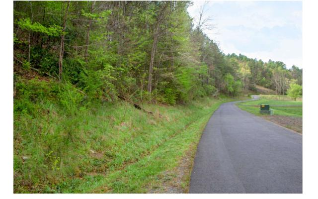 LT 15 River Sound Drive, Murphy, NC 28906 (MLS #287937) :: Path & Post Real Estate