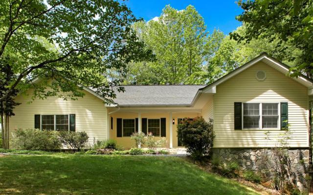 843 Bent Tree Lane, Young Harris, GA 30582 (MLS #287947) :: RE/MAX Town & Country