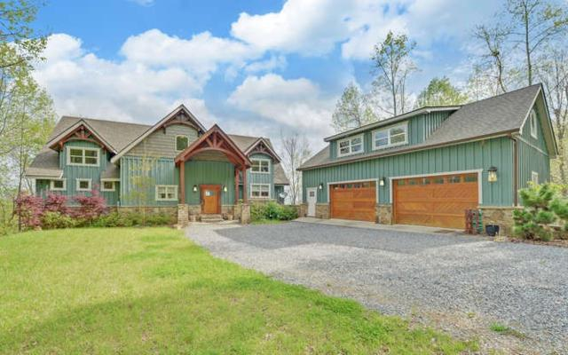 3125 Chatuge Overlook, Hiawassee, GA 30546 (MLS #287980) :: RE/MAX Town & Country