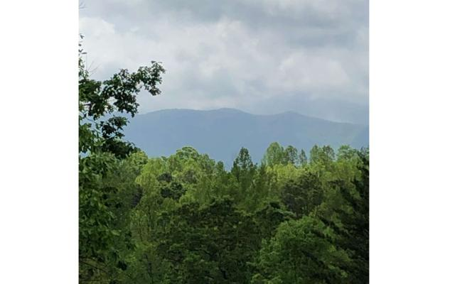 LOT 6 Ruby Ridge, Young Harris, GA 30582 (MLS #288014) :: RE/MAX Town & Country