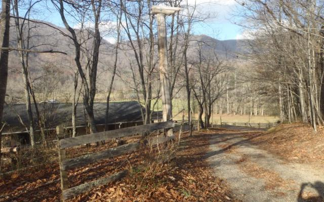 10981 Hwy 64 East, Hayesville, NC 28904 (MLS #288252) :: RE/MAX Town & Country