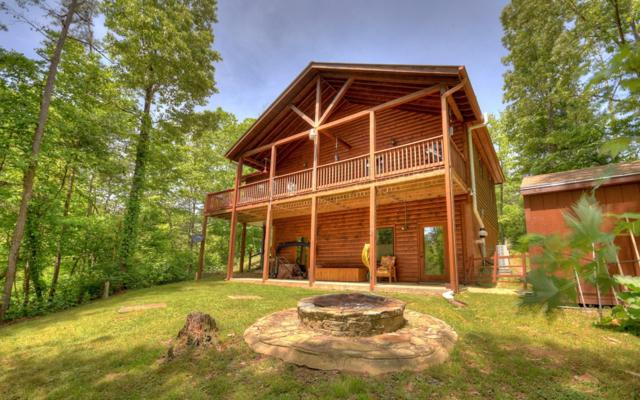 24 Twig Lane, Mineral Bluff, GA 30559 (MLS #288258) :: RE/MAX Town & Country