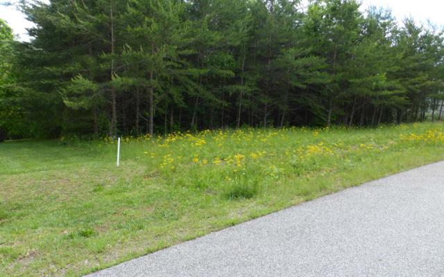 LT 49 Meadows Of Ivy Log, Blairsville, GA 30512 (MLS #288279) :: RE/MAX Town & Country