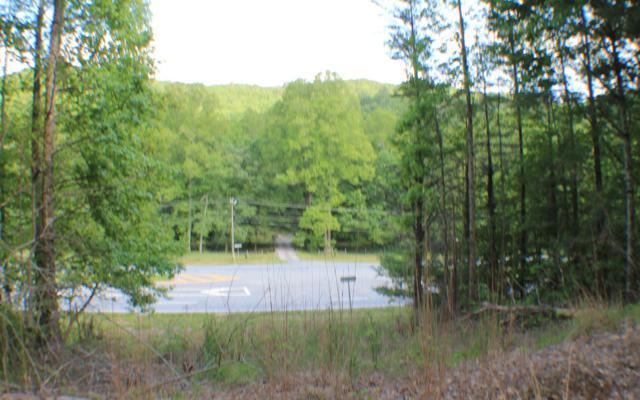 Highway 515, Cherry Log, GA 30522 (MLS #288346) :: RE/MAX Town & Country
