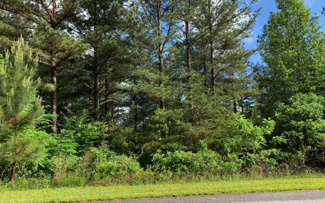 LT 16 Loftis Mountain, Blairsville, GA 30512 (MLS #288362) :: Path & Post Real Estate