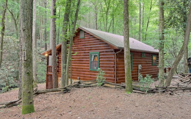 17 Chapman Lake, Blue Ridge, GA 30513 (MLS #288385) :: RE/MAX Town & Country