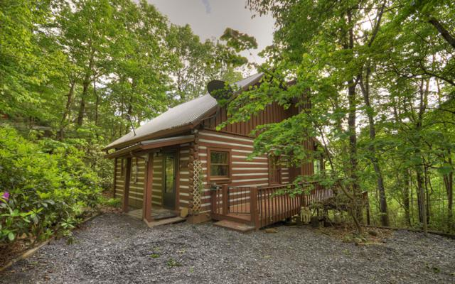 315 Hickory Nut Trail, Cherry Log, GA 30522 (MLS #288395) :: RE/MAX Town & Country