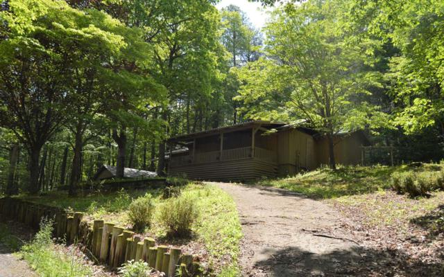 808 Glassy Mountain Road, Hiawassee, GA 30546 (MLS #288397) :: RE/MAX Town & Country