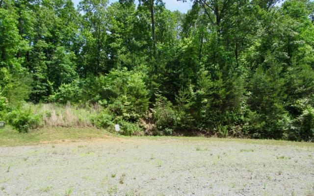 Winding Creek Road, Blue Ridge, GA 30513 (MLS #288459) :: RE/MAX Town & Country