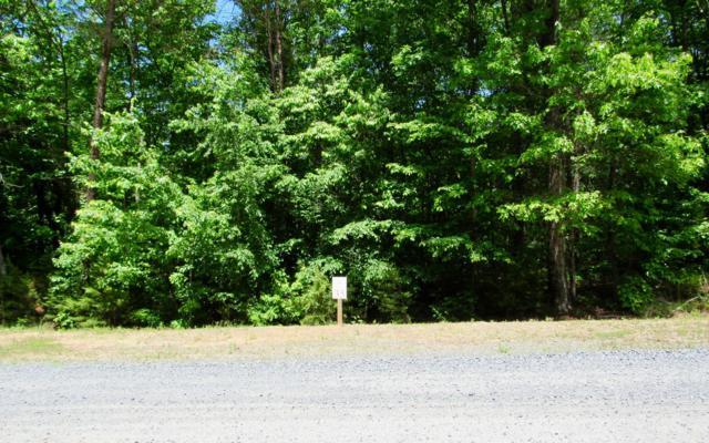 River Ridge Drive, Blue Ridge, GA 30513 (MLS #288460) :: RE/MAX Town & Country